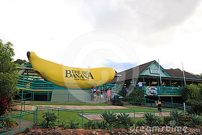 The Big Banana Editorial Photography