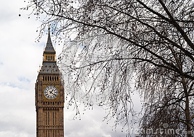 Big Ben with tree in London