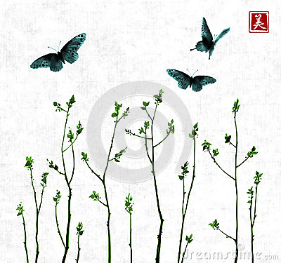 Free Big Butterflies And Tree Branches With Fresh Leaves On White Background. Traditional Oriental Ink Painting Sumi-e, U-sin Stock Photo - 98869520
