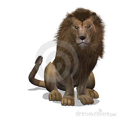 Free Big Cat Lion Male Stock Photo - 9343920