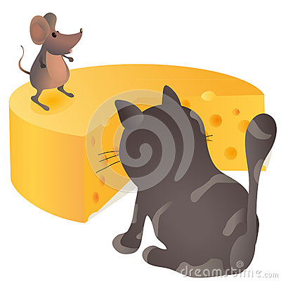 Big cat sitting in front of the mouse and cheese