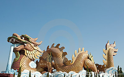 Big Chinese golden dragon