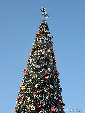 Big Christmas tree