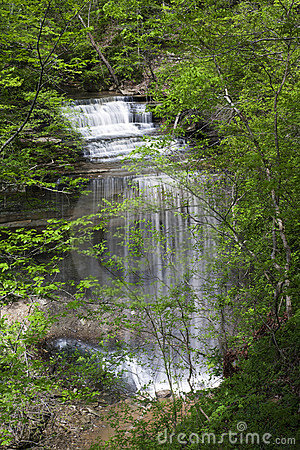 Free Big Clifty Falls In Clifty Fall State Park, Indiana Stock Image - 9274011