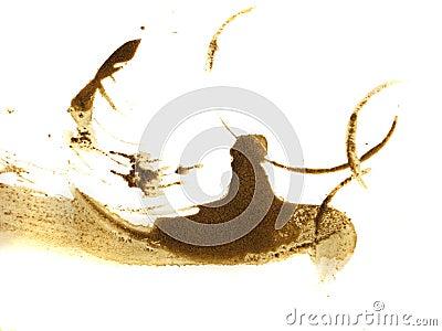 Big coffee splashes