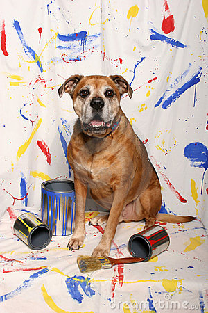 Big dog and paint cans