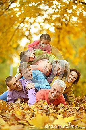 Free Big Family Having Fun Stock Photography - 98806792