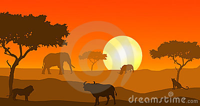 Big Five of Africa in sunset