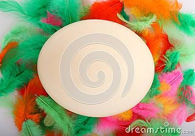Big ostrich egg