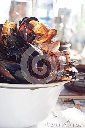 Big pile of mussel shells