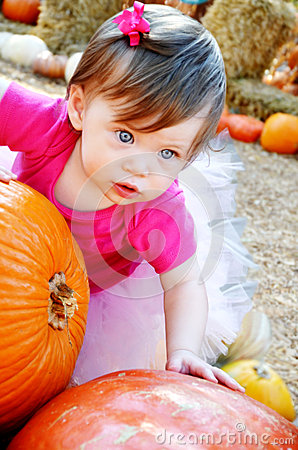 Free Big Pumpkin And Baby Royalty Free Stock Photography - 28273047