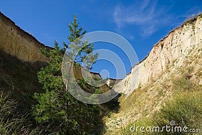 Big ravine