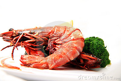 Big river prawn food