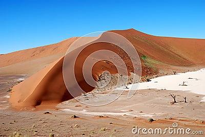 Big sand dune