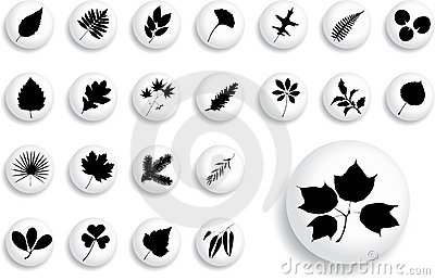 Big set buttons - 1_B. Leaves