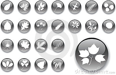 Big set buttons - 1_A. Leaves