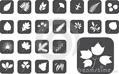Big set buttons - 1_Z. Leaves