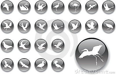 Big set buttons - 2_A. Birds