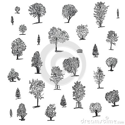 Big set of handdrawn isolated ink trees. Includes different trees: spruce, chestnut, bush, oak, poplar, birch, maple. Stock Photo