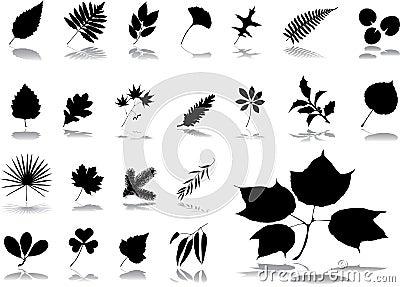 Big set icons - 1. Leaves