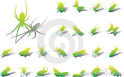 Big set icons - 10A. Insects