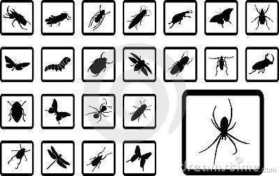 Big set icons - 10B. Insects
