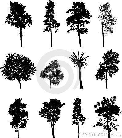 Free Big Set Isolated Trees - 1 Royalty Free Stock Images - 6160829