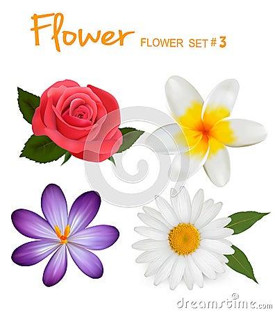 Free Big Set Of Beautiful Colorful Flowers Stock Image - 23733171