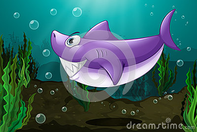A big shark under the sea
