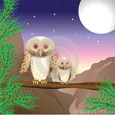 Big and small owls peer at a night distance