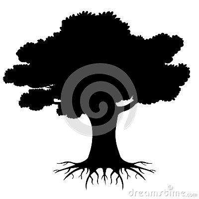 Free Big Tree  Roots  Silhouette  With Roots Royalty Free Stock Photography - 62686427