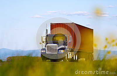 Big truck with container view through yellow flowers