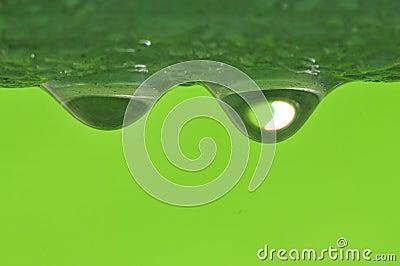 Big water dew