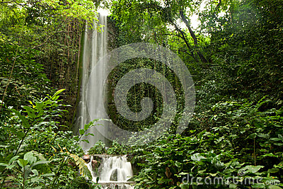 Big waterfall in a forest