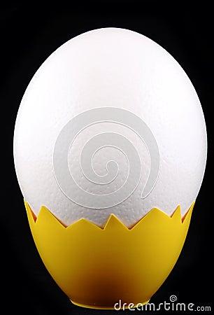 Big white egg