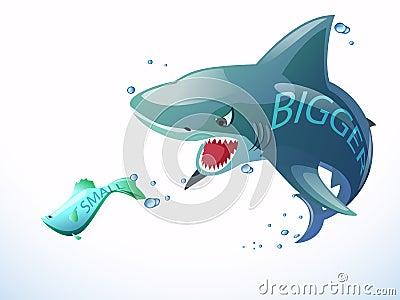 Shark eat small fish