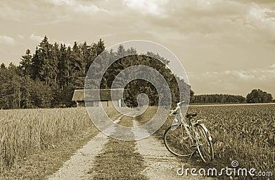 Bike and ancient farmhouse on wheat farmland
