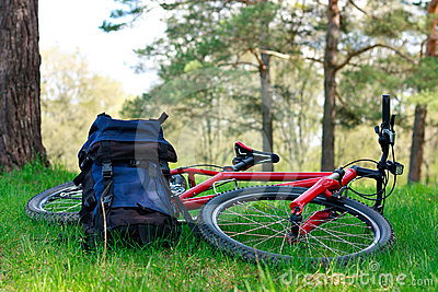 Bike and Backpack Lying on Green Grass