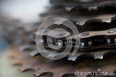 Bike Chain Gears