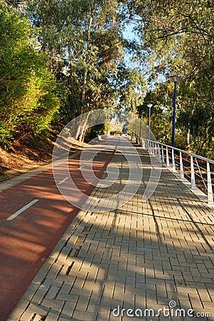 Bike lane in La cartuja