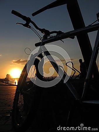 Bike on the sunset