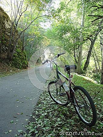 Free Bike Trail Into Light Stock Photo - 345980