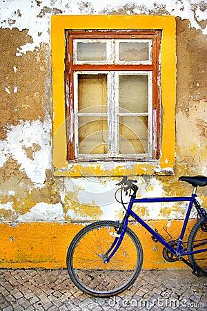 Bike Window