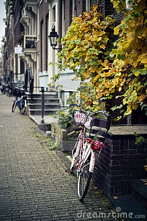 Free Bike With Tulips Royalty Free Stock Photography - 21296327