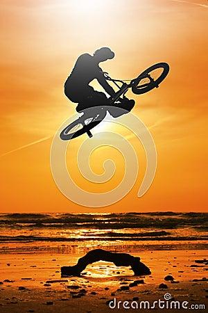 Free Biker Royalty Free Stock Photography - 12667667