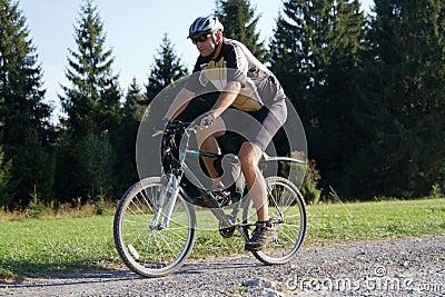 Biker on forest trail