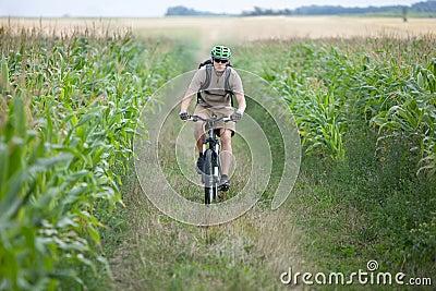 Biker riding at cornfield