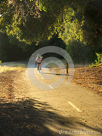 Biker on trail