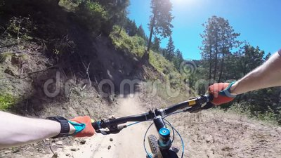 Bikers biking riding mountain bike in green forest on sunny day at Freund canyon in first person 4k point of view pov. Bikers biking riding mountain bike in stock footage