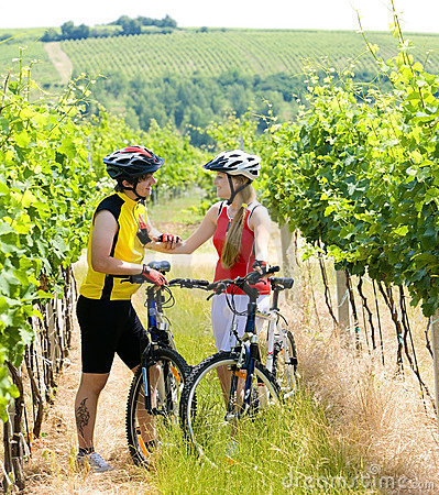 Bikers in vineyard
